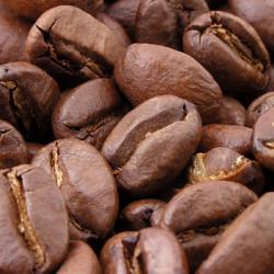 Mexique : Venez découvrir le café de Olla !